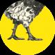 logo cocoricoop