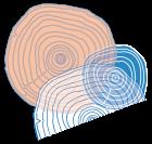 logo sophie t'hooft